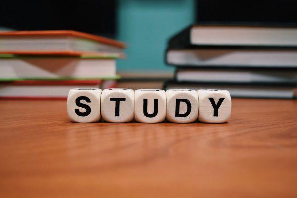 公務員の試験勉強を大学生がする時期はいつがいい?