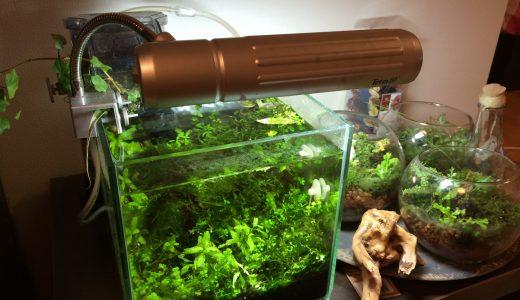 水槽フィルターのモーター音対策!作動音は製品で静音に違いはある?